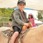 Petting Zoo & Pony Rides Photo by Capture Photography